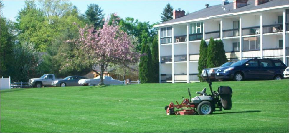 Lawn Service Bellevue WA